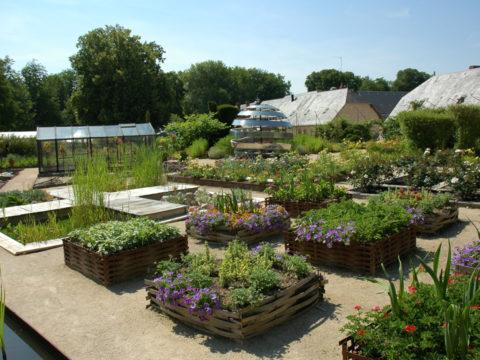 Jardin de Chaumont-sur-Loire